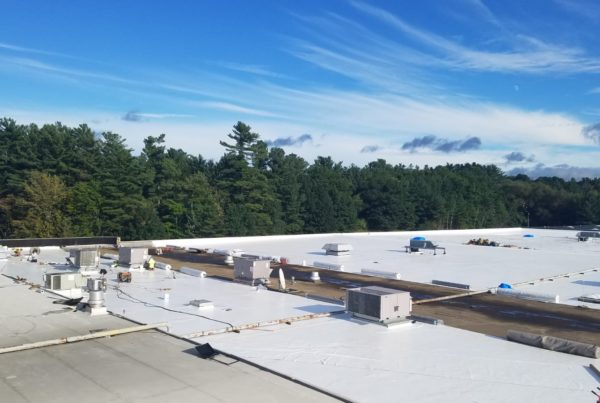 commercial roof replacement cost