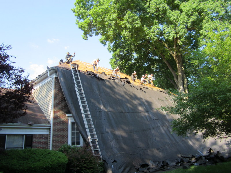 does homeowners insurance over roof leaks